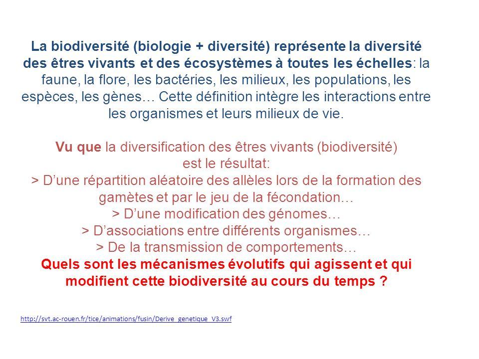 Vu que la diversification des êtres vivants (biodiversité)