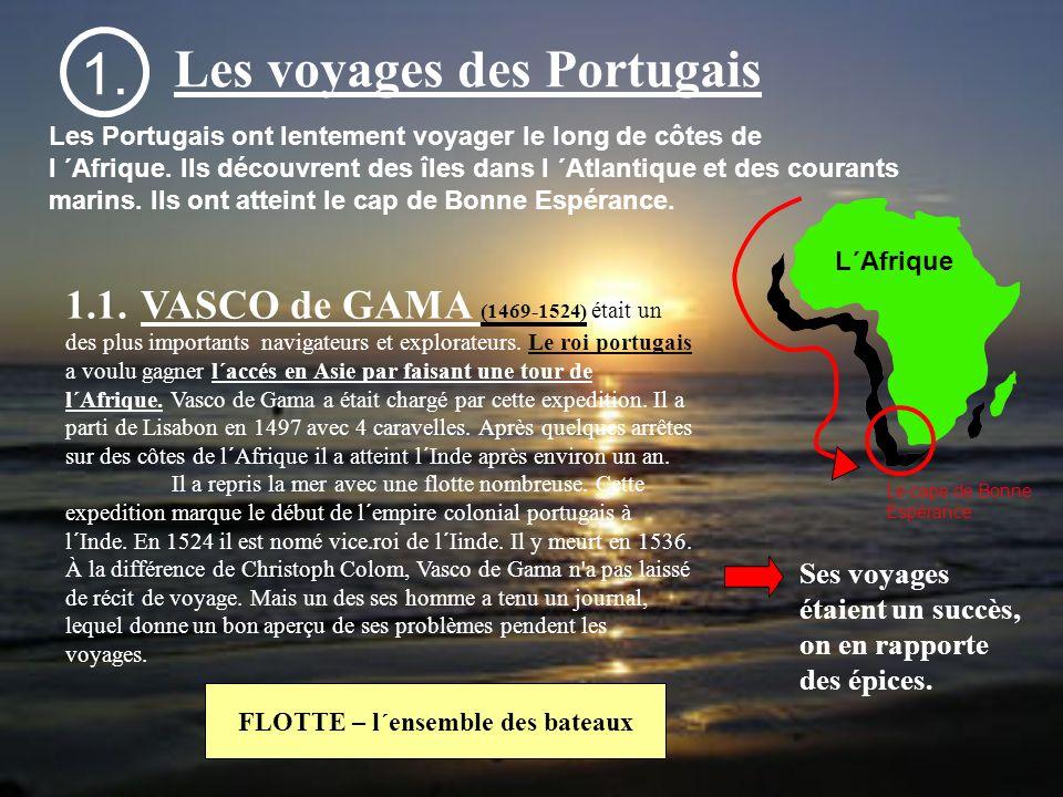 FLOTTE – l´ensemble des bateaux