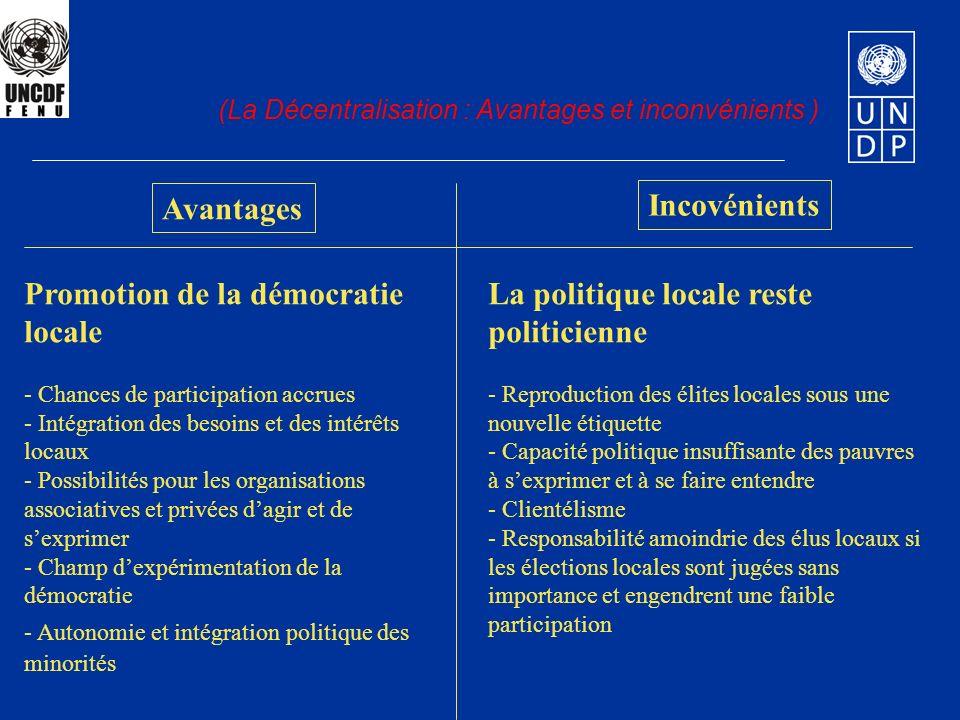 Promotion de la démocratie locale
