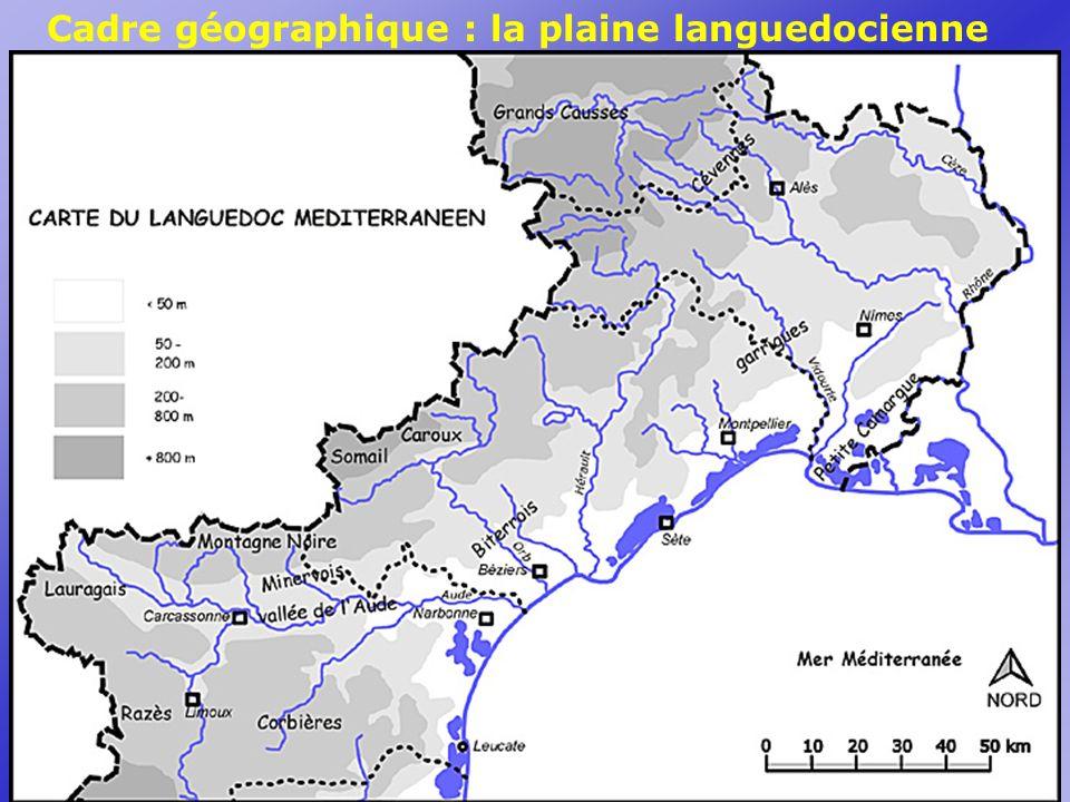 Cadre géographique : la plaine languedocienne