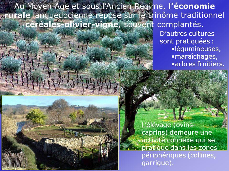 Au Moyen Age et sous l'Ancien Régime, l'économie