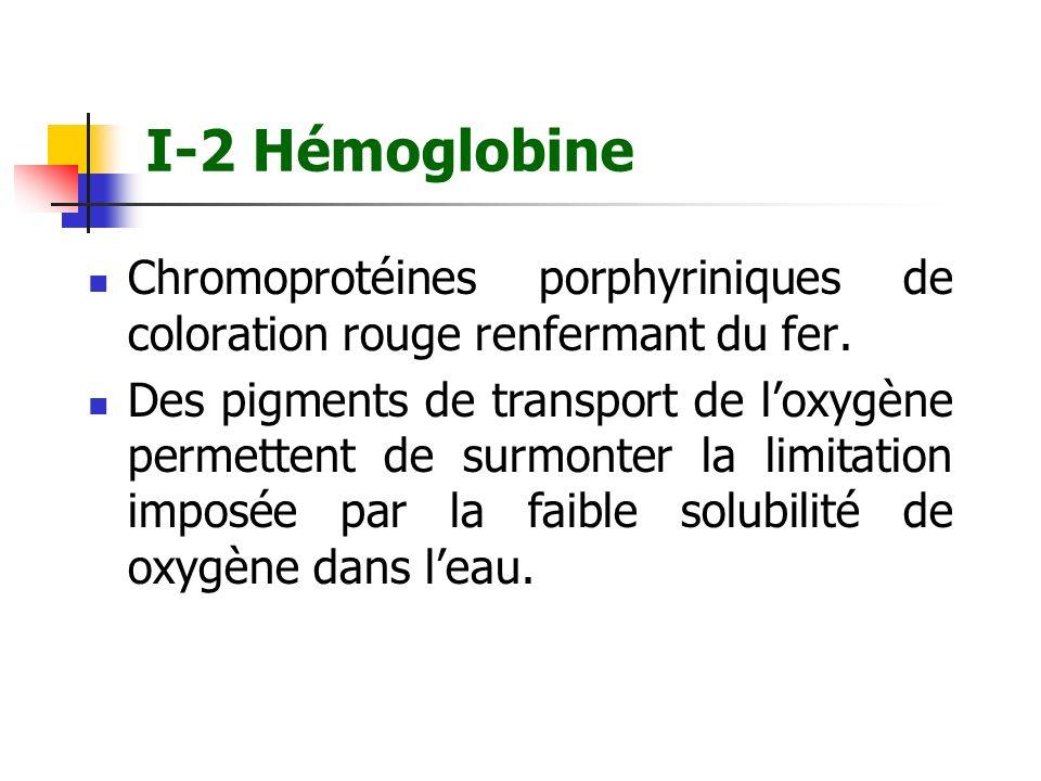 I-2 HémoglobineChromoprotéines porphyriniques de coloration rouge renfermant du fer.