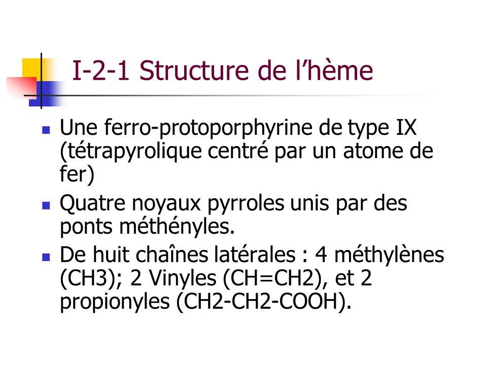 I-2-1 Structure de l'hème