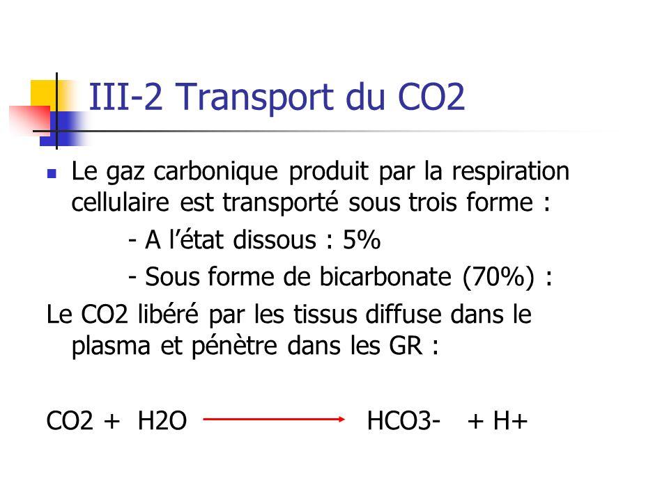 III-2 Transport du CO2 Le gaz carbonique produit par la respiration cellulaire est transporté sous trois forme :