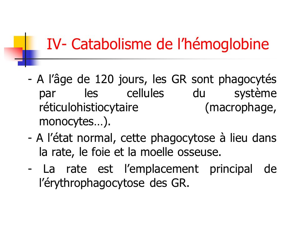 IV- Catabolisme de l'hémoglobine