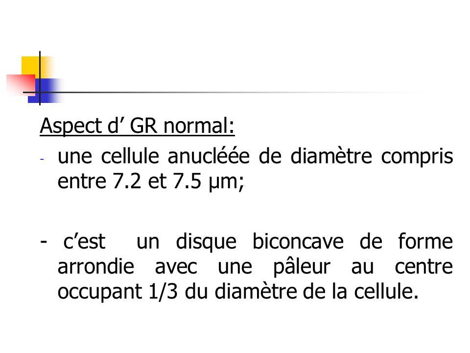 Aspect d' GR normal:une cellule anucléée de diamètre compris entre 7.2 et 7.5 µm;