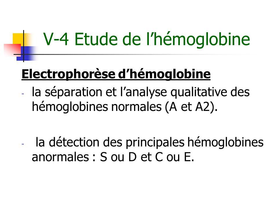 V-4 Etude de l'hémoglobine