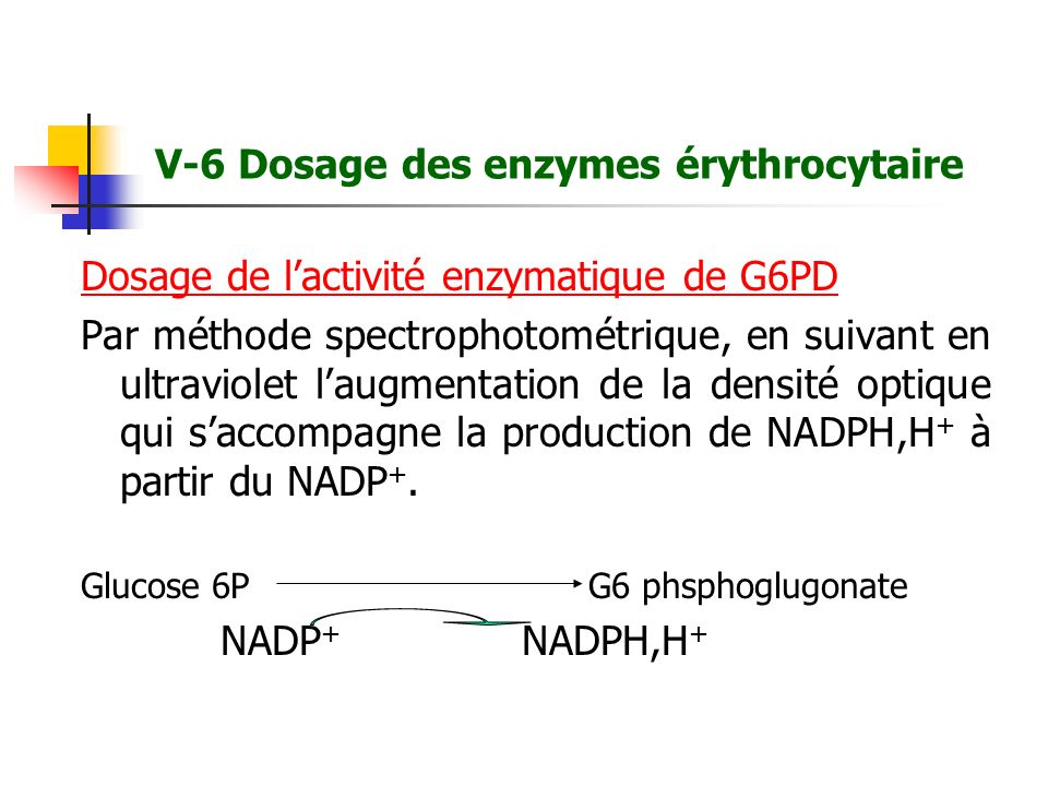 V-6 Dosage des enzymes érythrocytaire