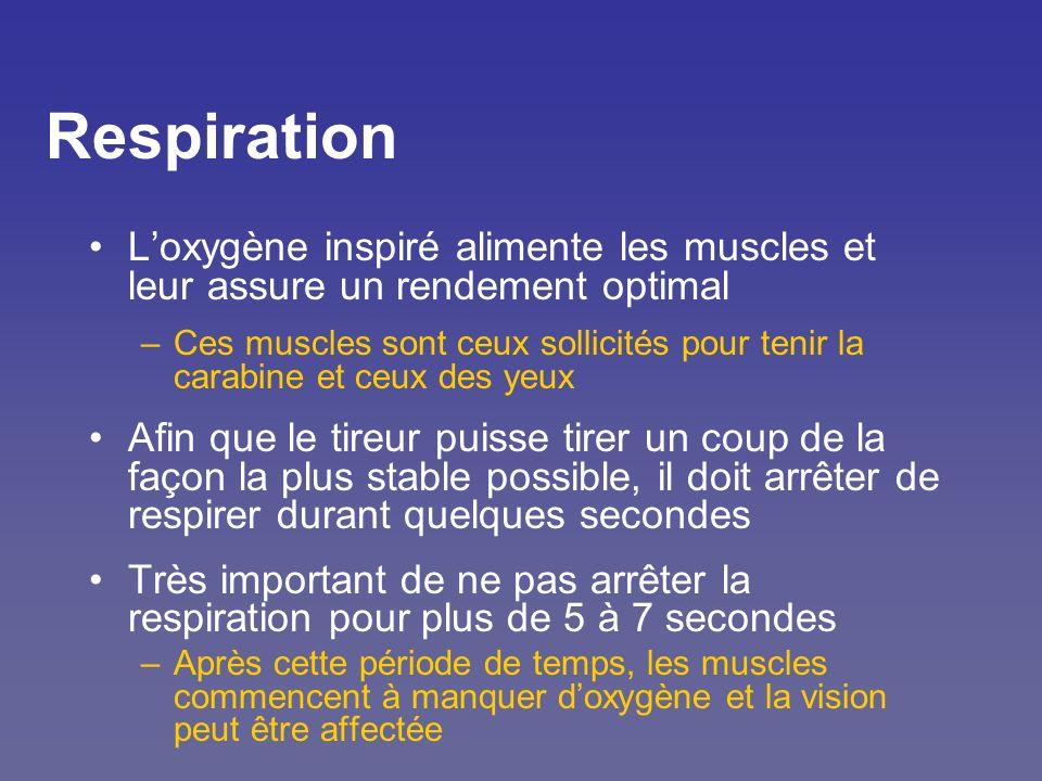 Respiration L'oxygène inspiré alimente les muscles et leur assure un rendement optimal.