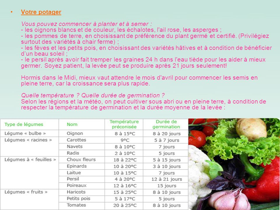 Votre potager Vous pouvez commencer à planter et à semer : - les oignons blancs et de couleur, les échalotes, l ail rose, les asperges ; - les pommes de terre, en choisissant de préférence du plant germé et certifié.