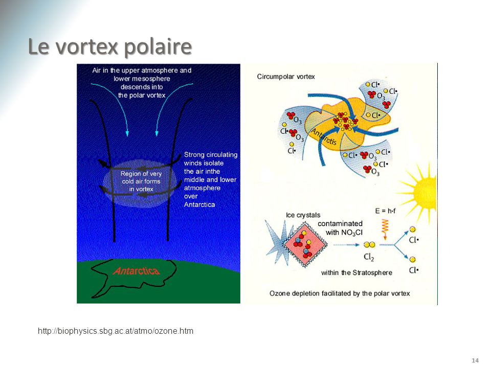 Le vortex polaire http://biophysics.sbg.ac.at/atmo/ozone.htm