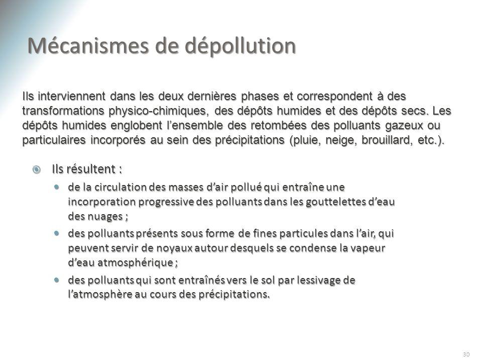 Mécanismes de dépollution