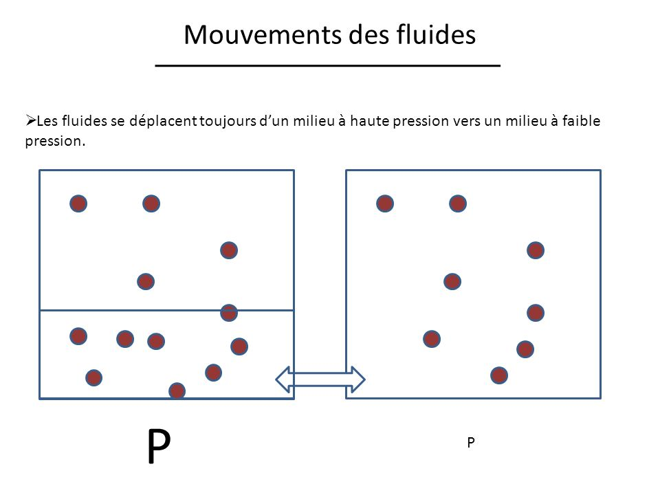 Mouvements des fluides
