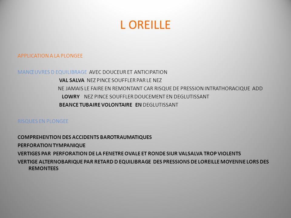 L OREILLE