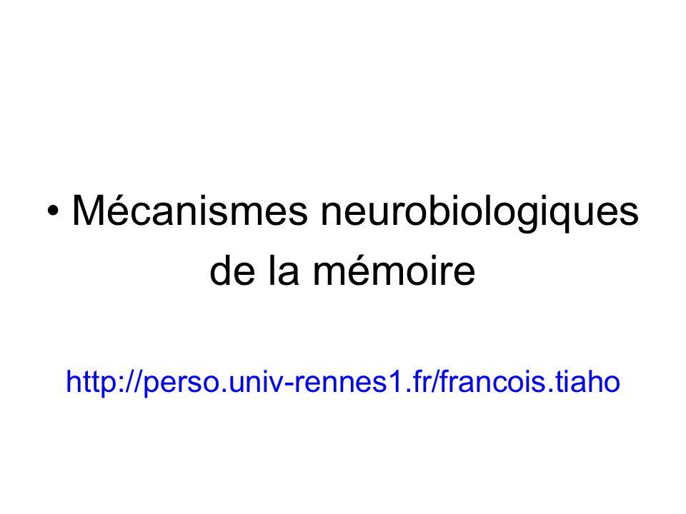 Mécanismes neurobiologiques