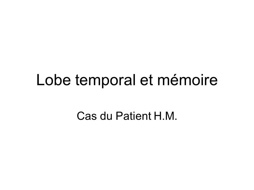 Lobe temporal et mémoire