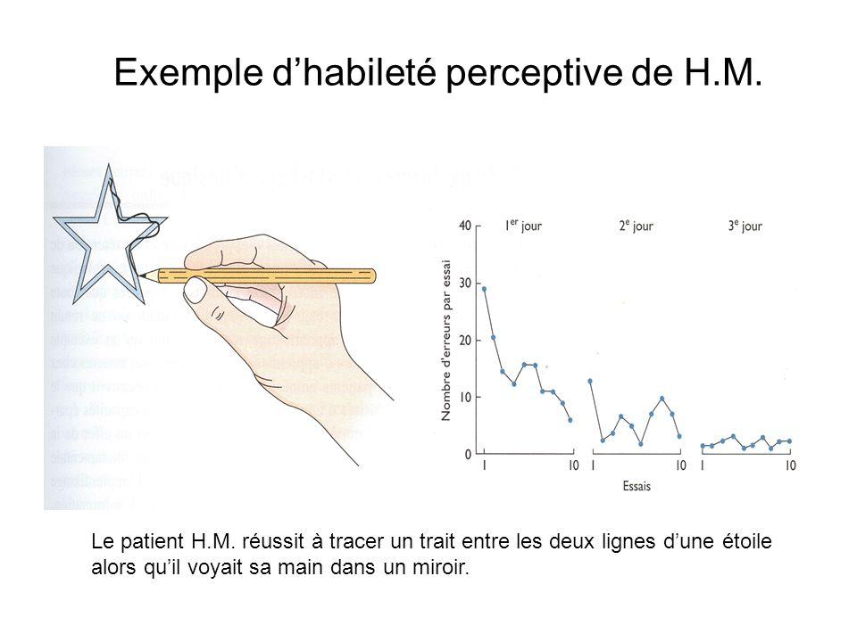 Exemple d'habileté perceptive de H.M.