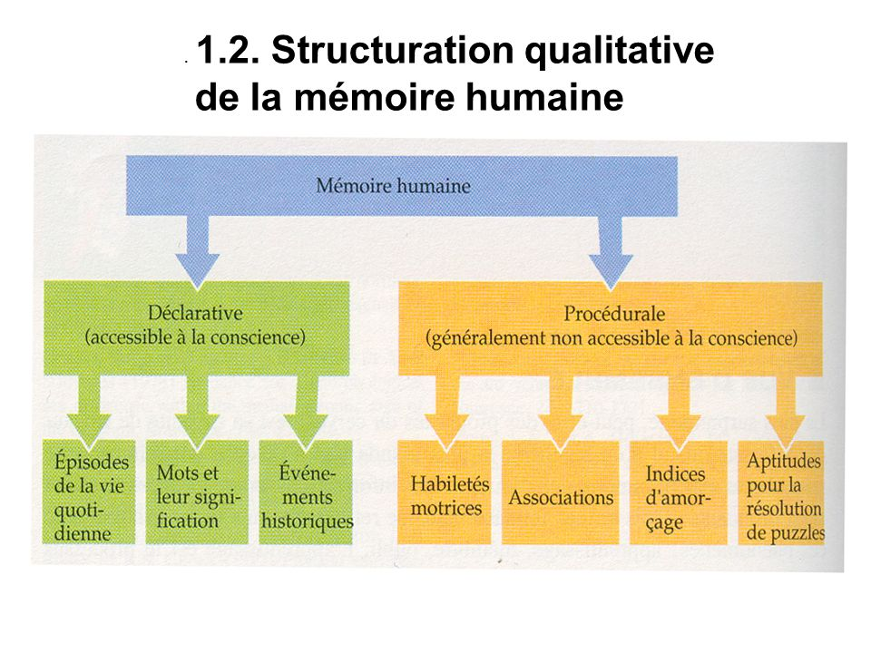 Structuration qualitative