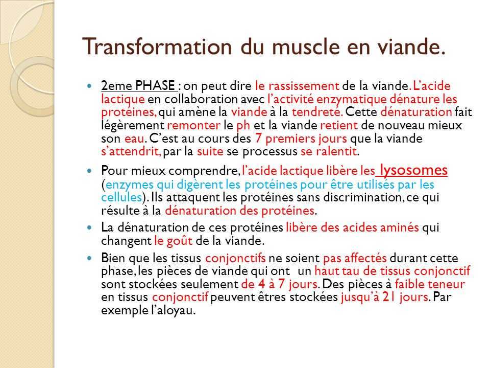 Transformation du muscle en viande.