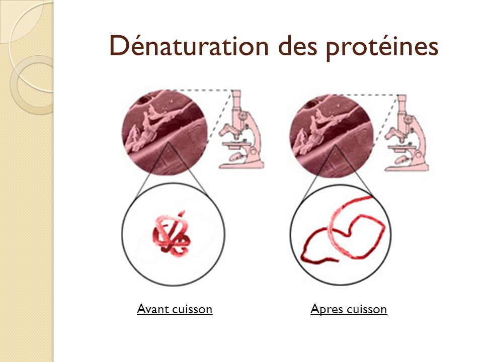 Dénaturation des protéines
