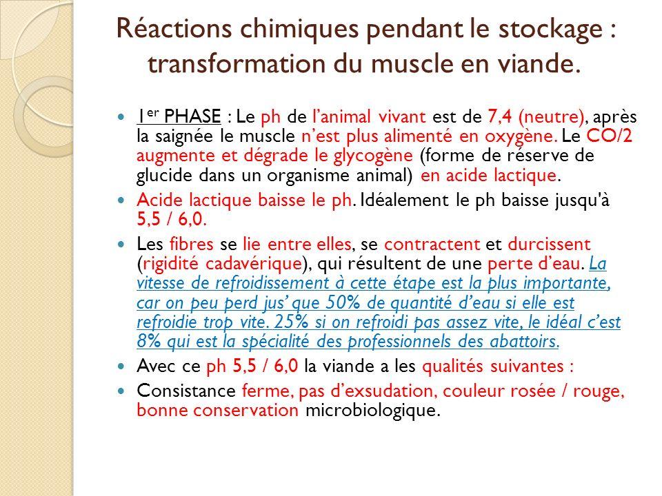Réactions chimiques pendant le stockage : transformation du muscle en viande.