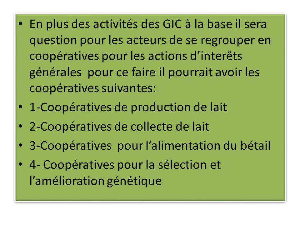 En plus des activités des GIC à la base il sera question pour les acteurs de se regrouper en coopératives pour les actions d'interêts générales pour ce faire il pourrait avoir les coopératives suivantes: