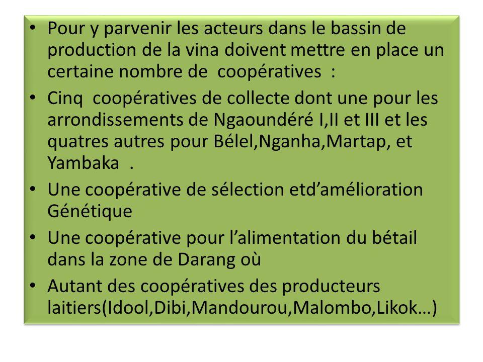 Pour y parvenir les acteurs dans le bassin de production de la vina doivent mettre en place un certaine nombre de coopératives :