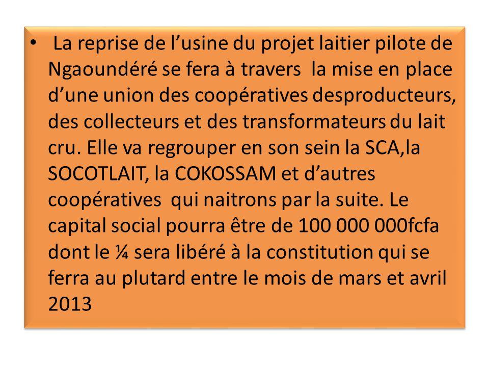 La reprise de l'usine du projet laitier pilote de Ngaoundéré se fera à travers la mise en place d'une union des coopératives desproducteurs, des collecteurs et des transformateurs du lait cru.