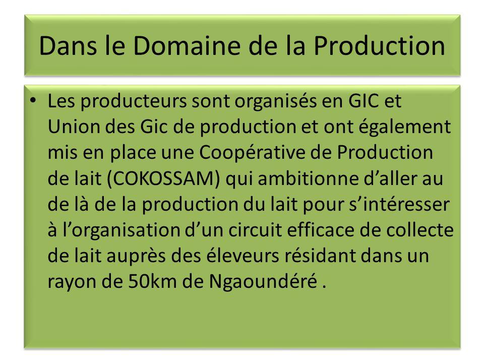 Dans le Domaine de la Production