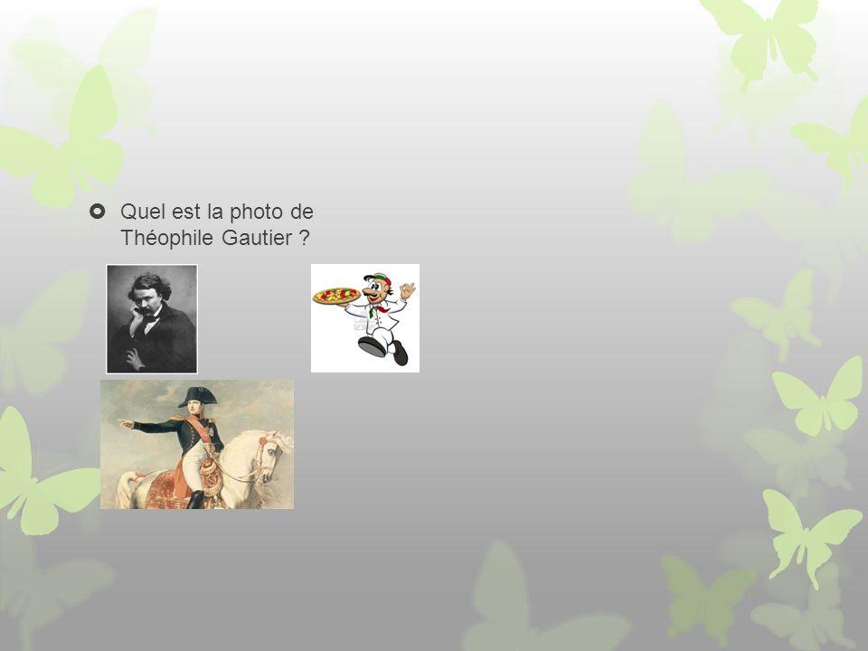 Quel est la photo de Théophile Gautier