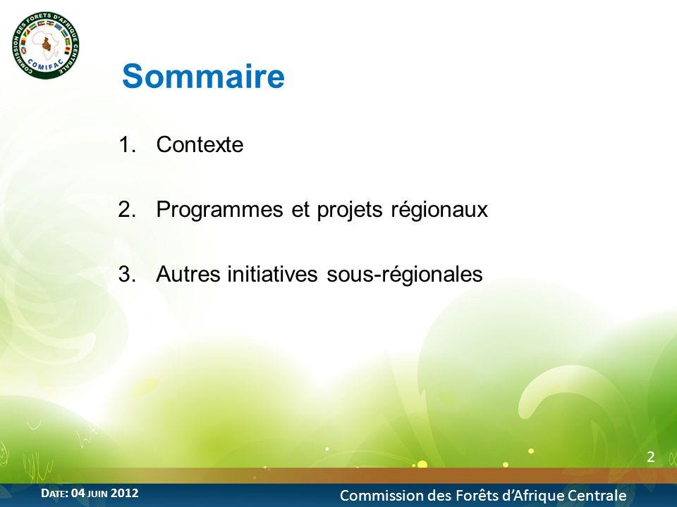 Sommaire Contexte Programmes et projets régionaux