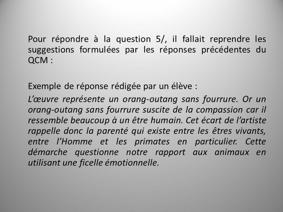 Pour répondre à la question 5/, il fallait reprendre les suggestions formulées par les réponses précédentes du QCM : Exemple de réponse rédigée par un élève : L'œuvre représente un orang-outang sans fourrure.