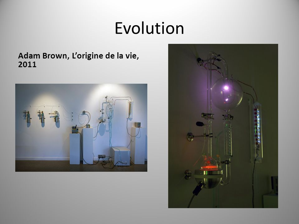 Evolution Adam Brown, L'origine de la vie, 2011