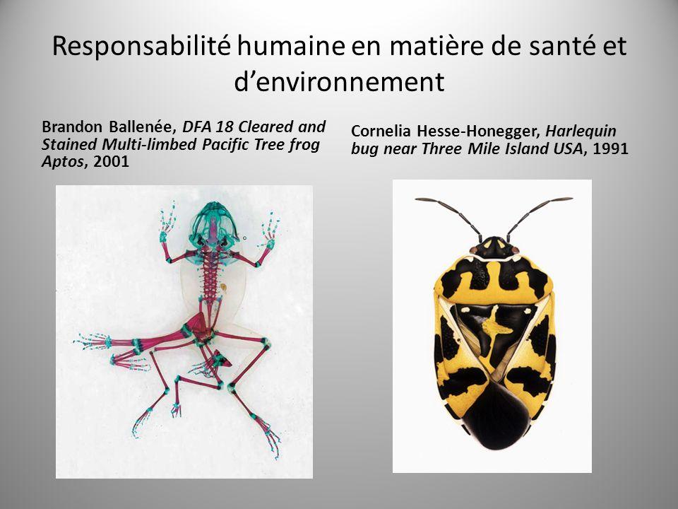 Responsabilité humaine en matière de santé et d'environnement