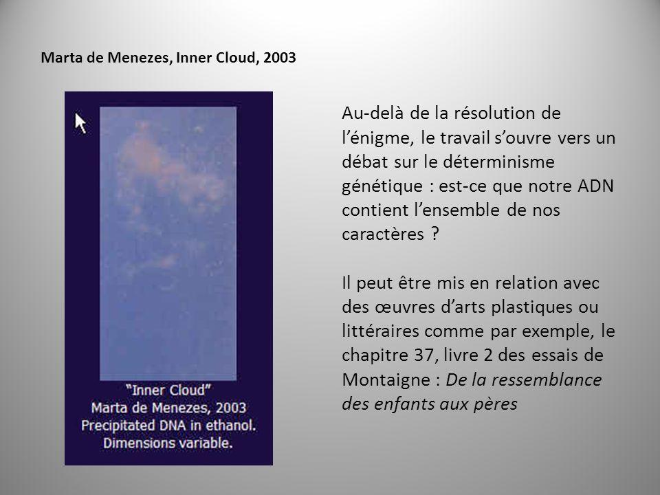 Marta de Menezes, Inner Cloud, 2003