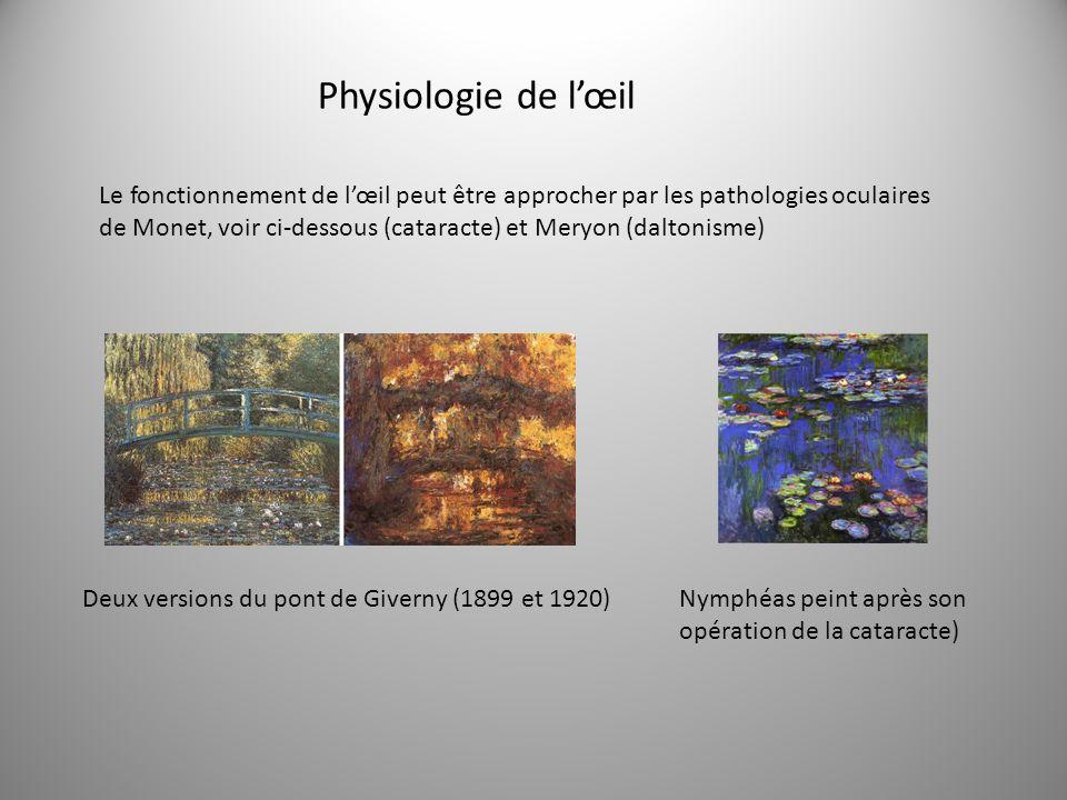 Physiologie de l'œil
