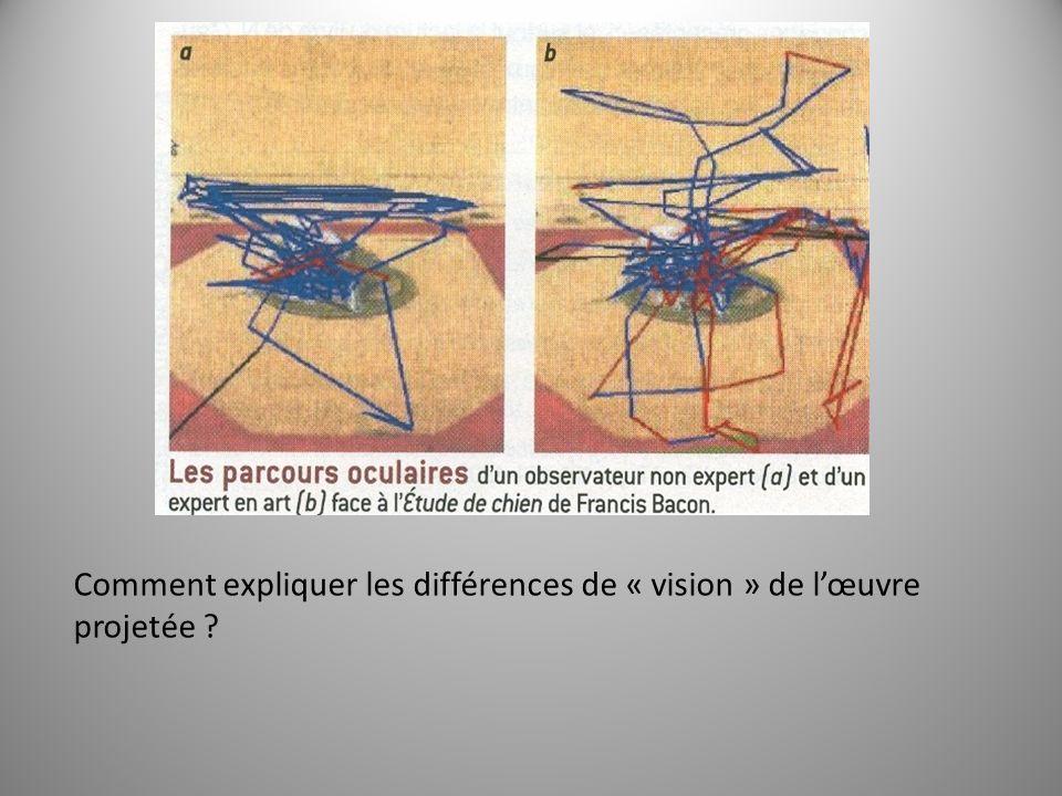 Comment expliquer les différences de « vision » de l'œuvre projetée