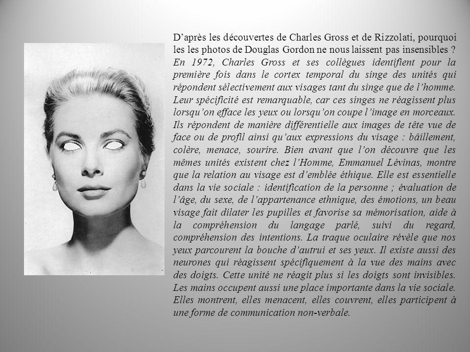 D'après les découvertes de Charles Gross et de Rizzolati, pourquoi les les photos de Douglas Gordon ne nous laissent pas insensibles