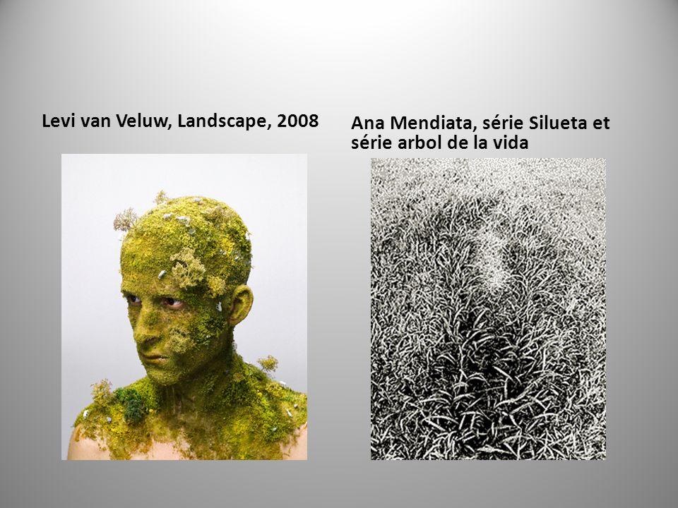 Levi van Veluw, Landscape, 2008