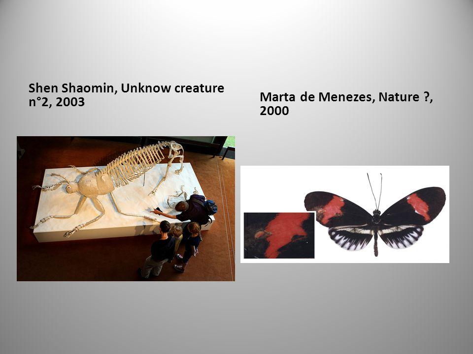 Shen Shaomin, Unknow creature n°2, 2003