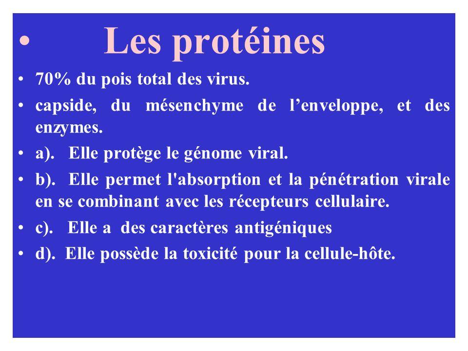 Les protéines 70% du pois total des virus.
