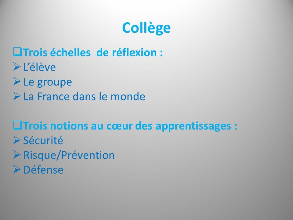 Collège Trois échelles de réflexion : L'élève Le groupe