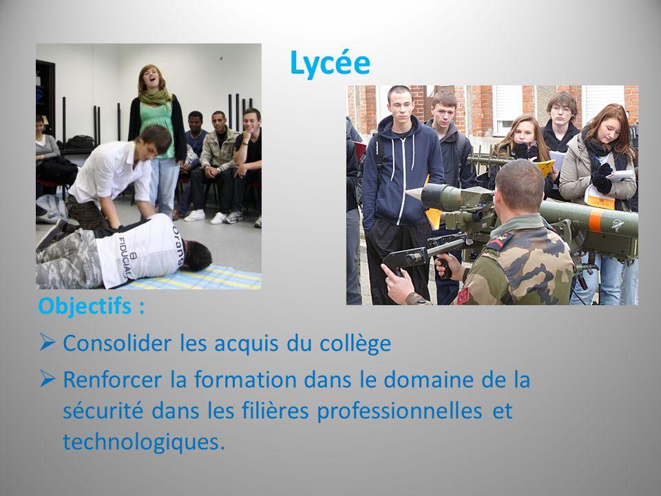 Lycée Objectifs : Consolider les acquis du collège