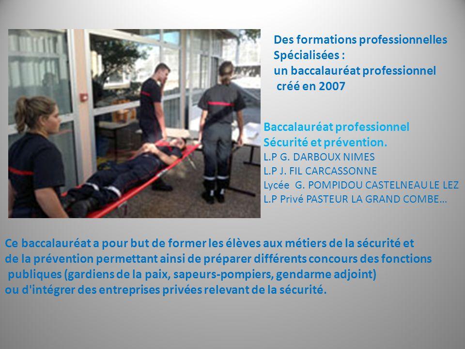 Des formations professionnelles Spécialisées :