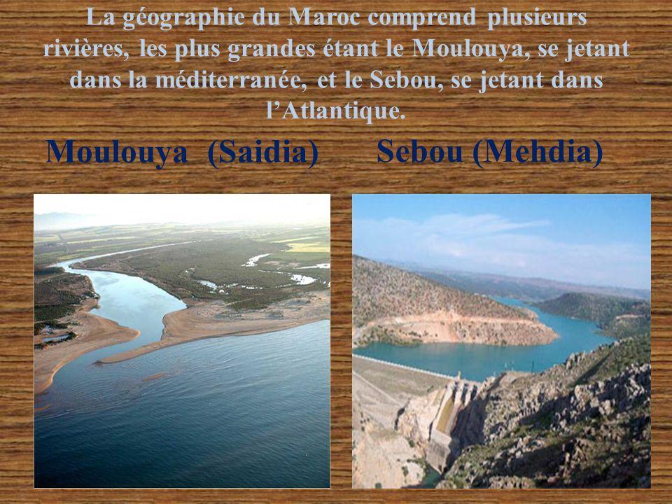 Moulouya (Saidia) Sebou (Mehdia)