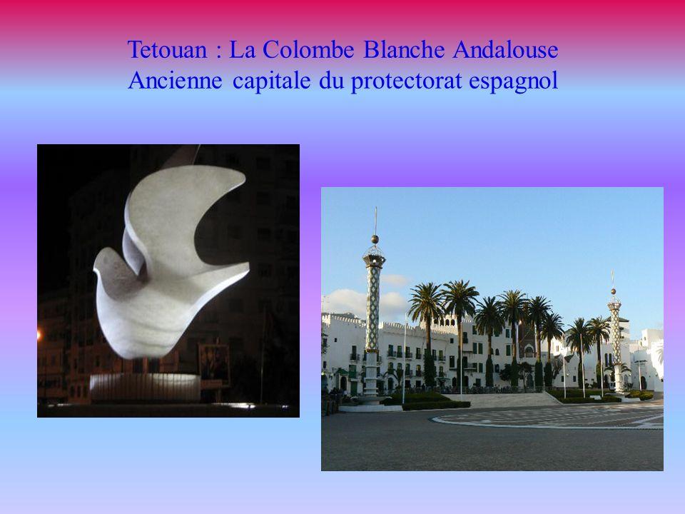 Tetouan : La Colombe Blanche Andalouse Ancienne capitale du protectorat espagnol