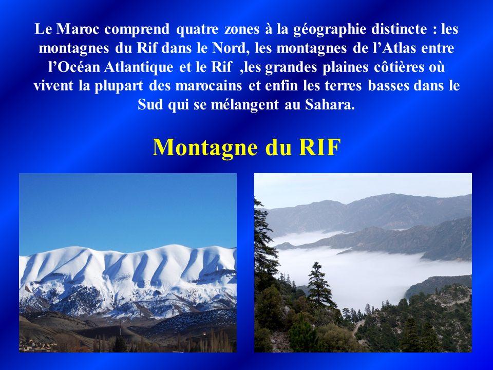 Le Maroc comprend quatre zones à la géographie distincte : les montagnes du Rif dans le Nord, les montagnes de l'Atlas entre l'Océan Atlantique et le Rif ,les grandes plaines côtières où vivent la plupart des marocains et enfin les terres basses dans le Sud qui se mélangent au Sahara.