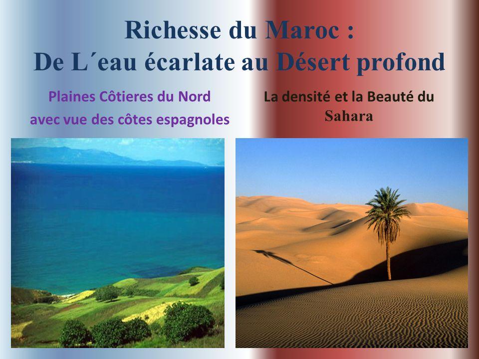 Richesse du Maroc : De L´eau écarlate au Désert profond