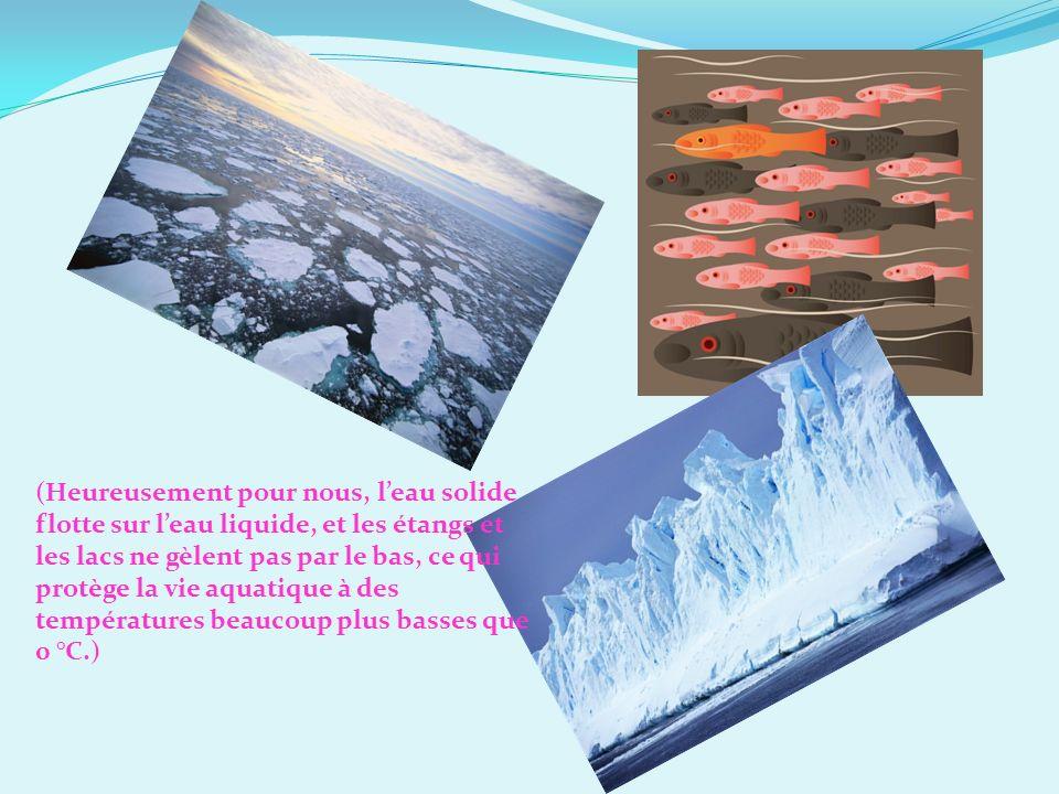 (Heureusement pour nous, l'eau solide flotte sur l'eau liquide, et les étangs et les lacs ne gèlent pas par le bas, ce qui protège la vie aquatique à des températures beaucoup plus basses que 0 °C.)