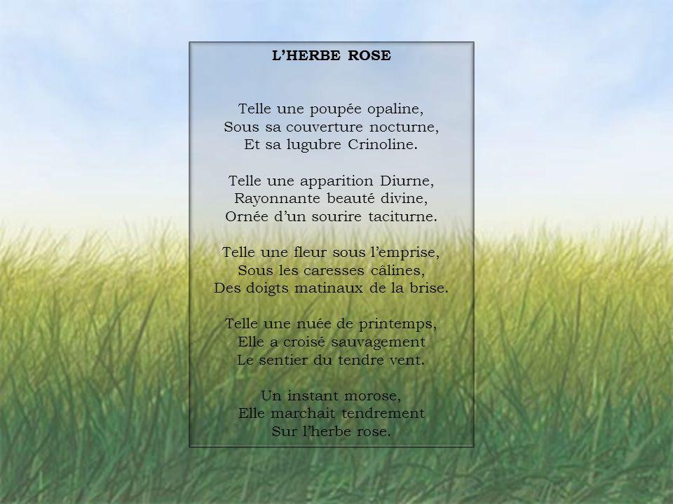 L'HERBE ROSE